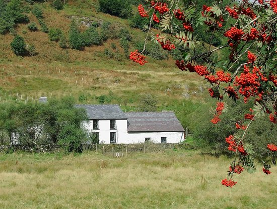 Elenydd Wilderness Hostels - Dolgoch Hostel