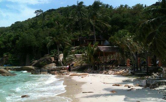 Hacienda Beach Resort : silver beach