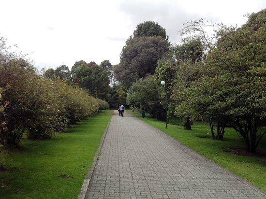 Senderos De Paz Picture Of Jardin Botanico De Bogota Jose Celestino Mutis Bogota Tripadvisor