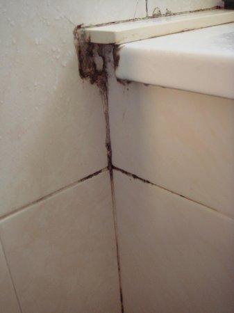 Hotel Fonda Siques : ducha
