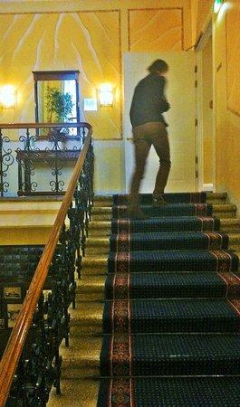 Radisson Blu Royal Astorija Hotel, Vilnius: имперский стиль)