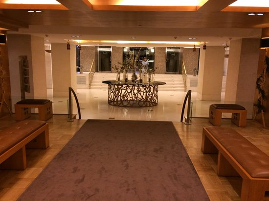 Hesperia Madrid: Lobby 1