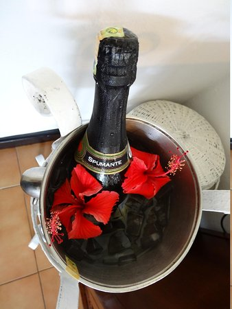 Sandies Tropical Village: Champagne for the occasion