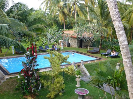 Shangri-Lanka Villa: The view of the christmassy gardens from the balcony (my family in the pool!)