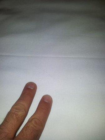 Hotel-Pension Bleckmann: peli