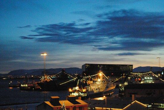 Icelandair Hotel Reykjavik Marina: View from room, Harpa concert hall.