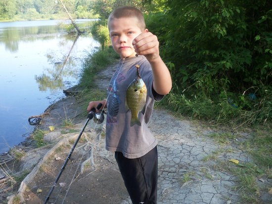 Maumee Bay State Park: Nice fish for a serious fisherman