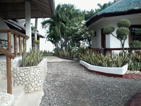 Marina Village Beach and Dive Resort : Garden and rooms