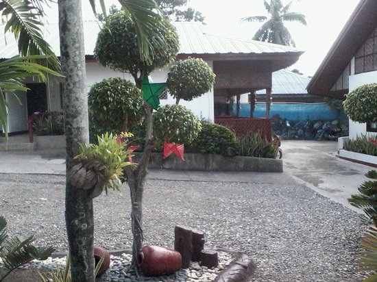 Marina Village Beach and Dive Resort : Garden and rooms/huts
