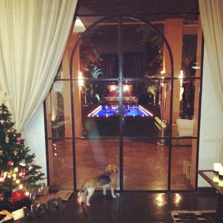 Villa Jardin Nomade: Lounge Room to Pool