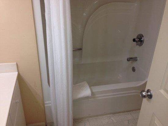 Greensprings Vacation Resort: Second bathroom