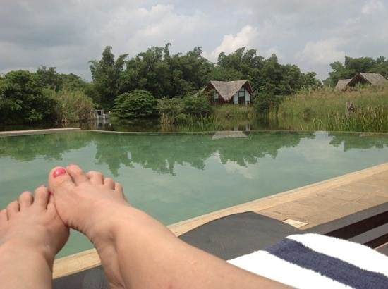 Jetwing Vil Uyana: Across the infinity pool and lake