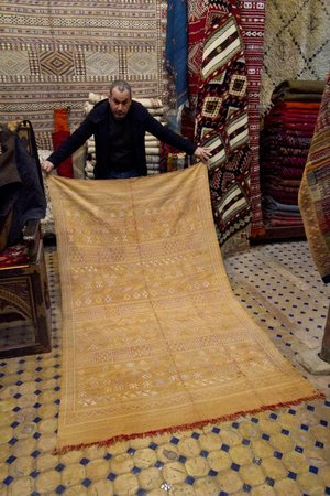 Coin Berbere: Mohammad Showing a cactus silk rug