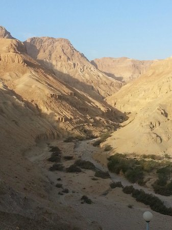 Ein Gedi Hotel: the view from the room
