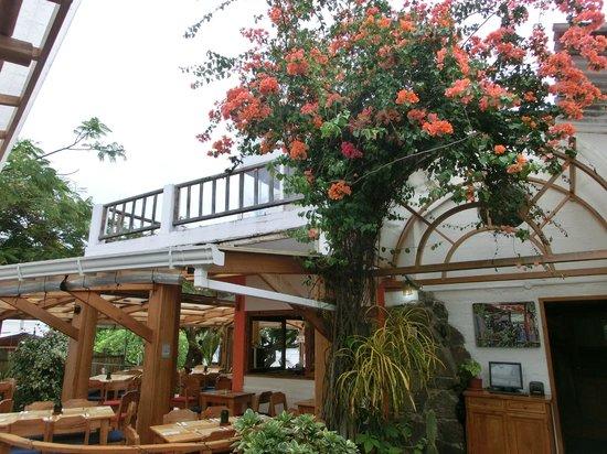 Il Giardino : Restaurant