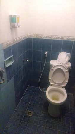 Bali Reski Asih Cottages : dirty smelly bathroom