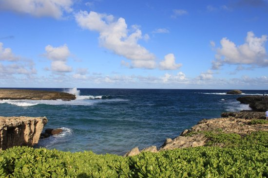Koa Lani Private Tours: Hidden Photo