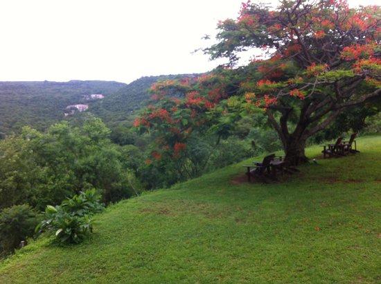 Abangane Guest Lodge: uitzicht vanaf de veranda