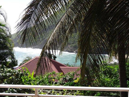 Anse Figuier: Vue de la terrasse