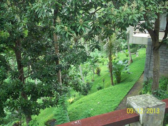 Beji Ubud Resort: Территория