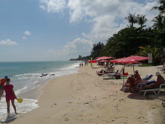 Lamai Wanta: Beach