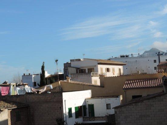 Alcudia Petit Hotel: Aussicht