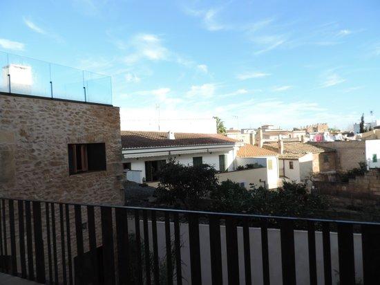 Alcudia Petit Hotel: Zimmeraussicht