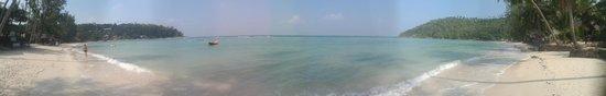 Green Papaya Resort : Beach panorama