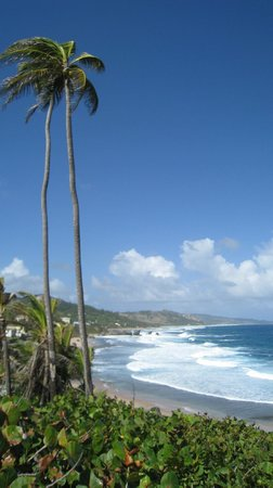 The Club, Barbados Resort and Spa: Bathsheba, Atlantic Coast