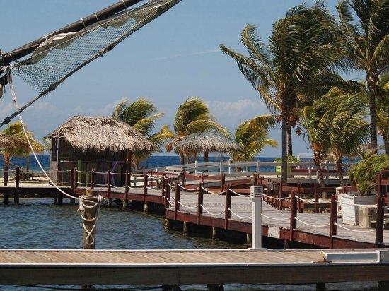 Tobri Divers: Karibik pur