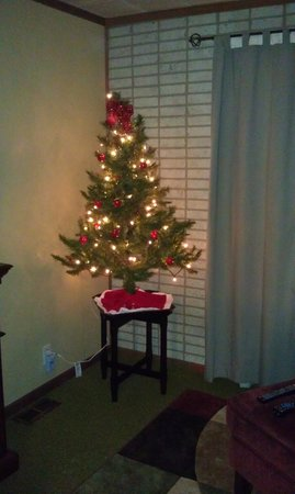 The Westside Guest House: Christmas tree in the apartment- wonderful touch!