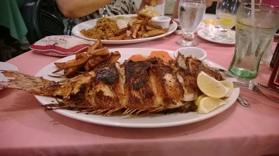 The Poop Deck: Snapper-catch of the day