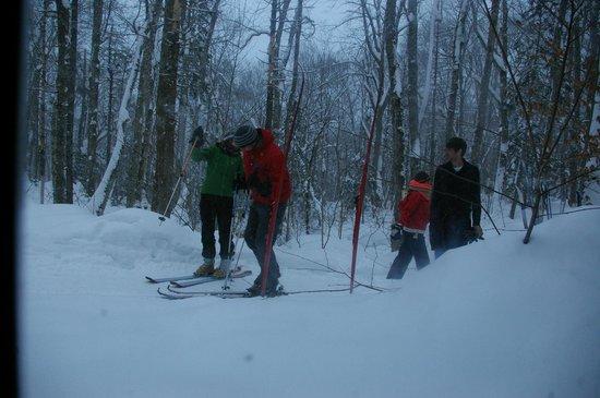 Tuonela Ski Village: Ski trails