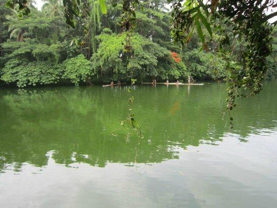 Villa Escudero Resort: mystical looking river