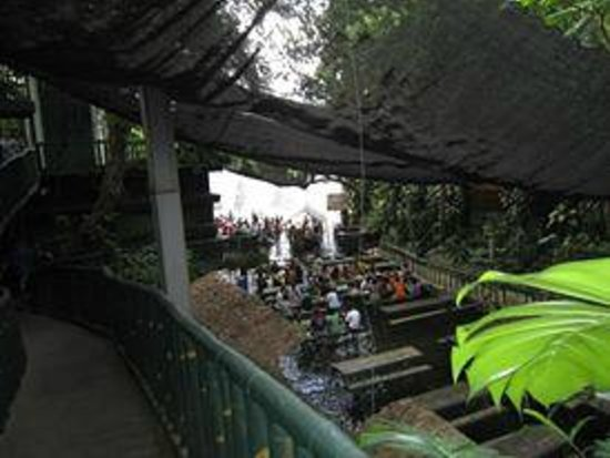 Buffet lunch at the waterfalls picture of villa escudero Villa escudero room pictures