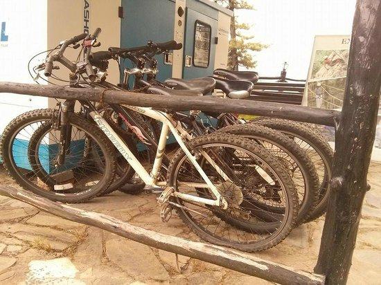 Tethys Ski Resort Narkanda : For Bikers!