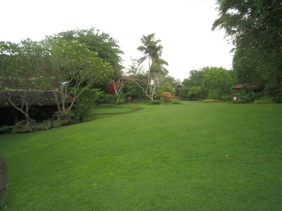 Villa Escudero Resort: well maintained lawn