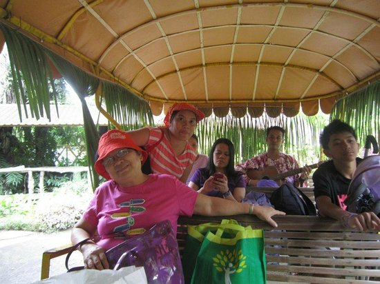 Villa Escudero Resort: carabao ride with serenade as entertainment