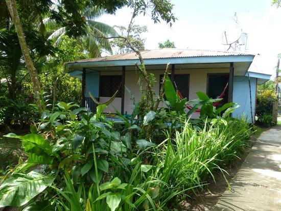 Cabinas Tortuguero: Garten