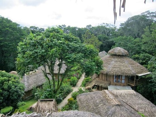 La Selva Amazon Ecolodge: From the rooftop of the main dining room
