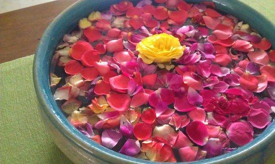 Footprint Bed & Breakfast: Welcome flowers