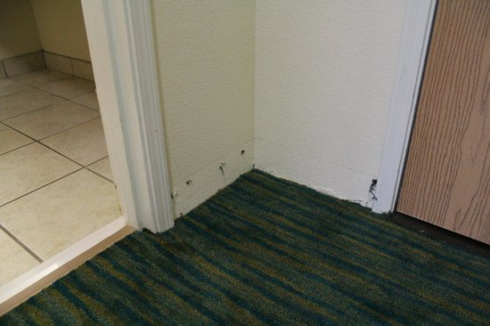 Holiday Inn Express & Suites Jacksonville - Blount Island: Missing base-moulding/carpet