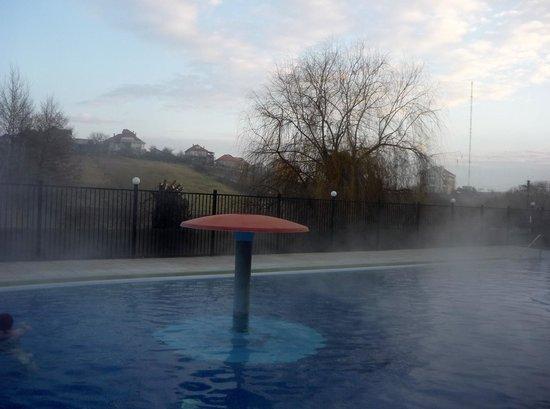 Hotel Perla : outside pool