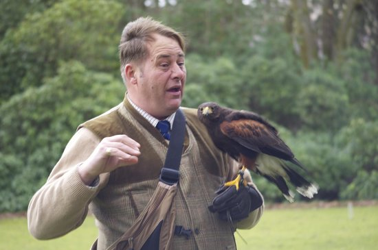 Inverlochy Castle Hotel: Falconry display