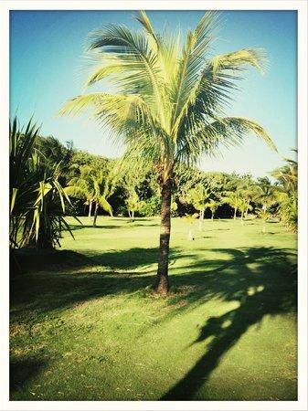 Royalton Hicacos Varadero Resort & Spa: Grands espaces verts