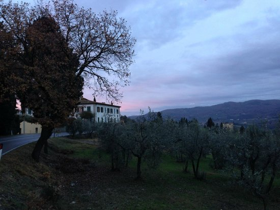 Agriturismo La Presura: View from the grounds