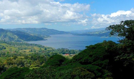 Sky Adventures - Arenal Park: view from overlook on jungle trek