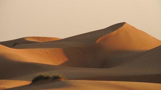 Desert Nights Camp: les dunes