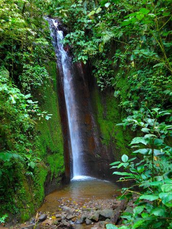 Sky Adventures - Arenal Park: one of the waterfalls on the jungle trek