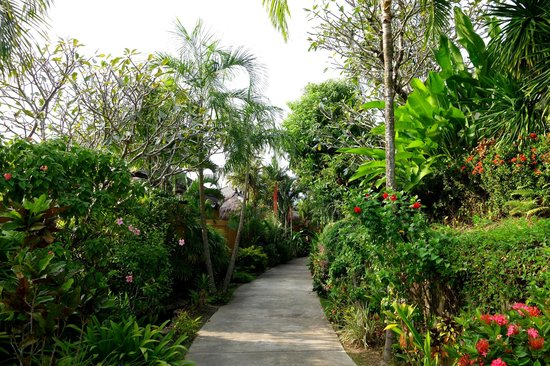 Chandara Resort & Spa: Hotel grounds